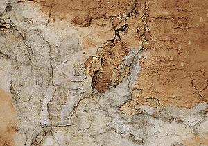 Exterior Decay, Sheathing & Siding