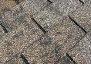 Dark,Dirty-Looking Areas On Roof